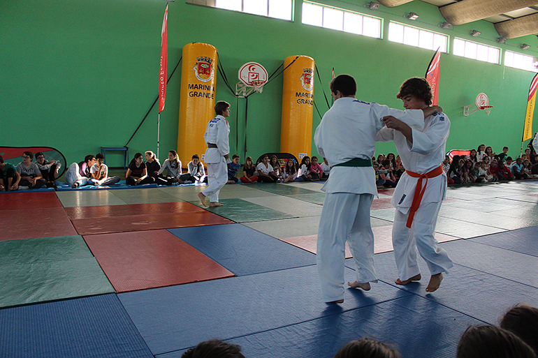 Click to enlarge image judo02.JPG